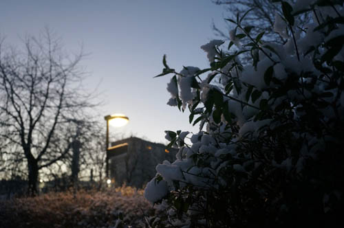 Pagi dan salju pertama di Stockholm